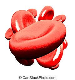 cellule, -, isolato, sangue, bianco rosso