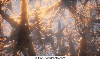 cellule, réseau, neurone, par, intérieur, voyage, cerveau