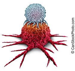 cellule, tumeur, t, cancer, attaquer