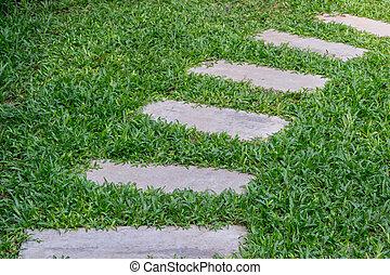 cement pathway on grass in garden