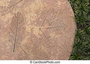 cement wall - texture flower pattern design space interior background