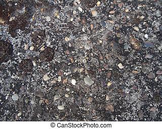 cemento, arruinado, pared, fungi., piedras