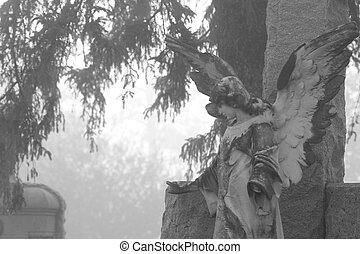 Cemetery Angel statue in fog