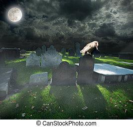 cemetery in a foggy night
