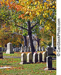 Large Cemetery on a Crisp October Day