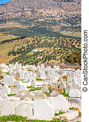 Cemetery in Fez, Morocco - Muslim Cemetery on the hill...