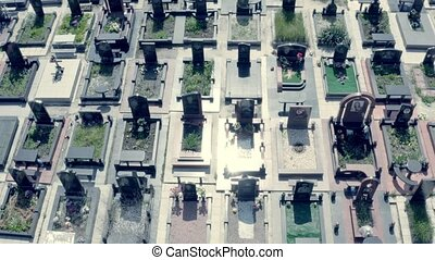 Large cemetery grid layout - top down view blocks tombs in a graveyard in a big city covid halloween