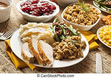 cena de turquía, acción de gracias, casero
