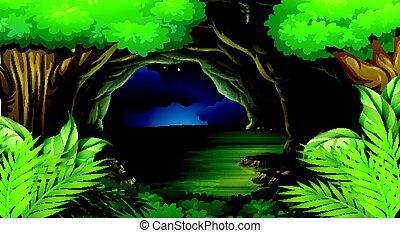 cena noite, floresta, tempo