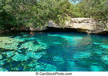 Cenote in Riviera Maya of Mayan Mexico sinkhole exposing...