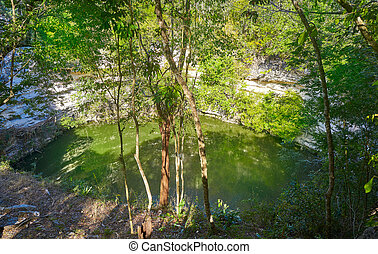 Cenote Sagrado sacred sinkhole Chichen Itza - Cenote Sagrado...