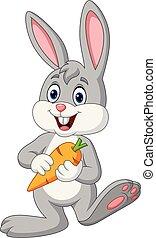 cenoura, caricatura, coelho, segurando