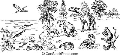 Many different animals of cenozoic era