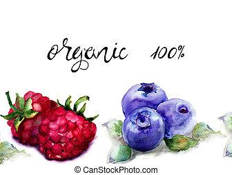 cent, myrtilles, titre, framboise, organique, 100