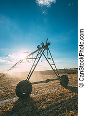 Center pivot irrigation system with drop sprinklers in field