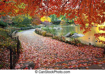 centrální, list, sad, york, podzim, čerstvý