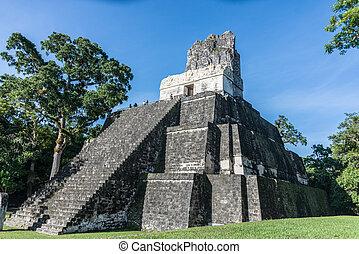 centra, 国民, mayan, park., 旅行, guatemala, tikal, 台なし