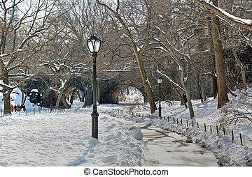 centraal, lightpost, park, winter