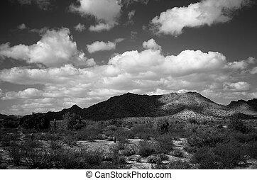 Black and white of central Arizona desert