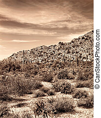 Old style image Arizona desert and mountains