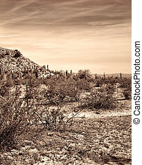 Old style image central Arizona desert and mountains