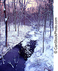 Central Illinois Winter Forest Stream