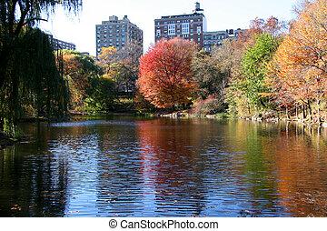 central, novo, parque, york, outono