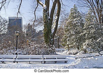 Central Park and Snow