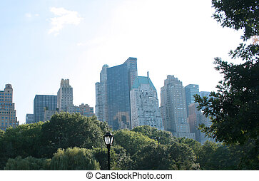 Central Park and the skyline in NYC