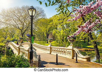 Central park at spring, New York