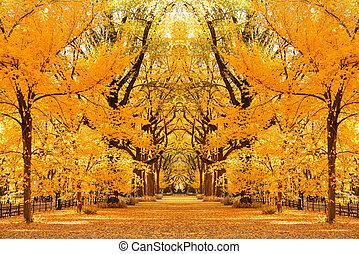 Central Park Autumn in midtown Manhattan New York City