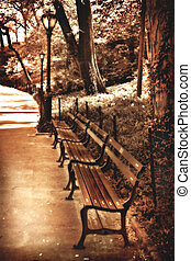 gothic glow, park benches in Central Park, NYC