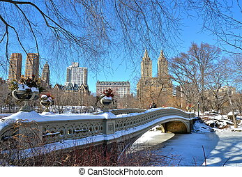 Central Park, Bow bridge in winter.
