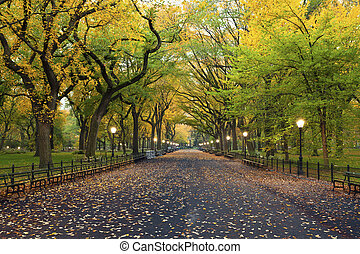 Image of The Mall area in Central Park, New York City, USA at autumn.