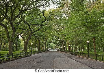 Central Park. - Image of The Mall area in Central Park, New ...