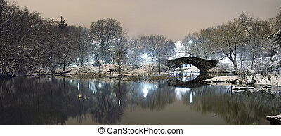 Central Park in NYC at night