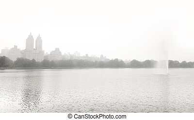 Central park in NYC