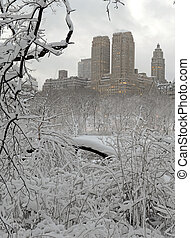 Central Park in the snow, New York