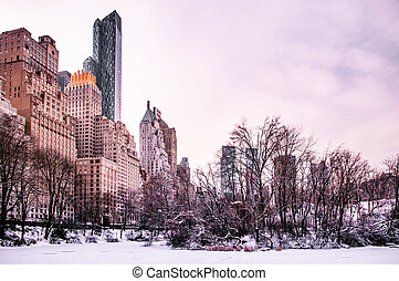 Central Park, New York in winter