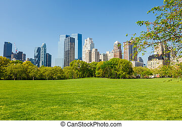 Central park, New York - Central park at sunny day, New York...