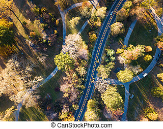 Central park road aerial view in autumn