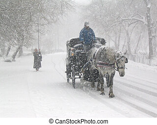 Central Park snow 2 - Heavy snow in Central Park, Manhattan,...