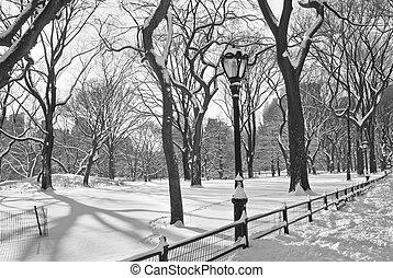 Central Park Snowfall BW