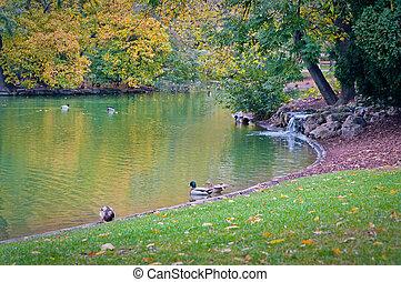 Stadtpark - Central Park Stadtpark, Vienna Austria