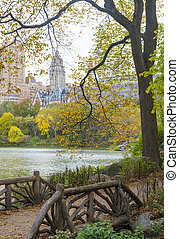 Central park - The Central park in New York at autumn
