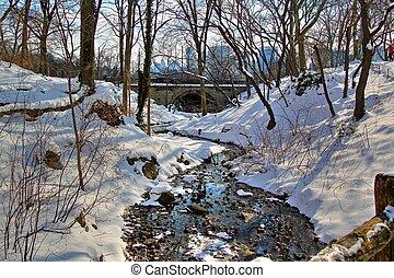 Central Park winter 94