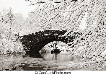Central Park winter with stone bridge in midtown Manhattan...