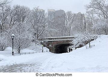 central, snowstorm, após, parque, nyc