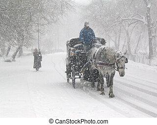 centralen parkerar, snö, 2