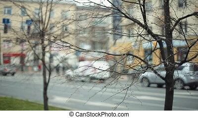 centre ville, voitures, confiture, trafic, stands